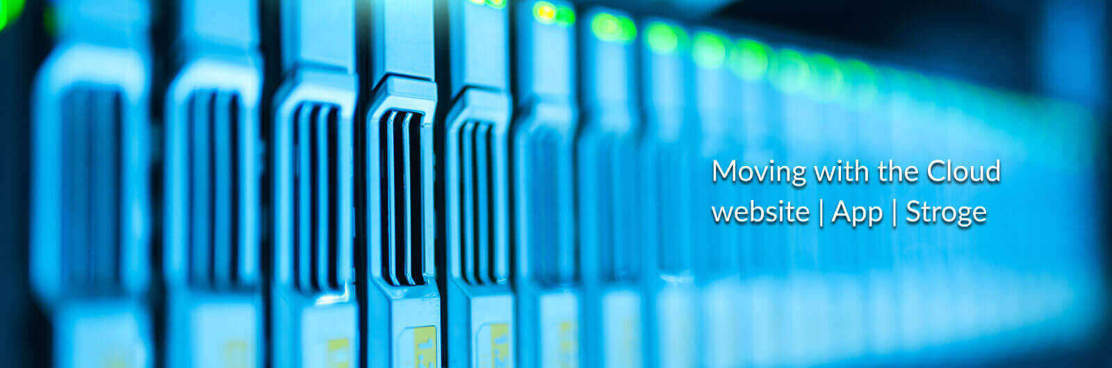 Web Solution Consulting and hosting services